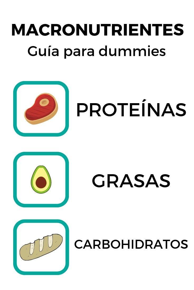 GUÍA DE MACRONUTRIENTES