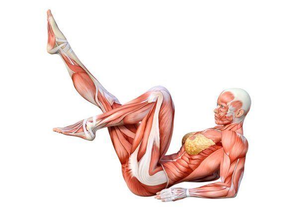 10 Ejercicios para fortalecer tu espalda y tonificar abdominales 5