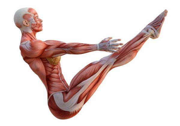 10 Ejercicios para fortalecer tu espalda y tonificar abdominales 7