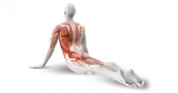 10 Ejercicios para fortalecer tu espalda y tonificar abdominales 1