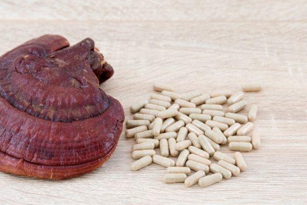 Suplementos de hongos: Todo lo que necesitas [LA GUÍA DEFINITIVA] 3
