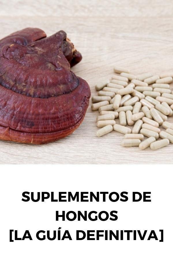 Suplementos de hongos: Todo lo que necesitas [LA GUÍA DEFINITIVA]