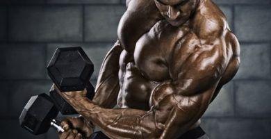 El ejercicio para bíceps con barra Z! 8