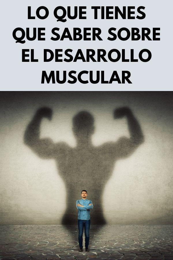 Lo que tienes que saber sobre el desarrollo muscular