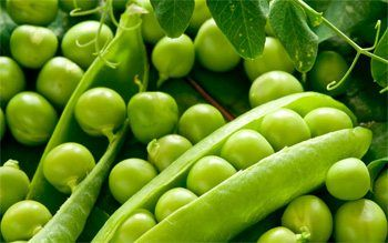 40 alimentos ricos en proteínas. Ideales para adelgazar! 16