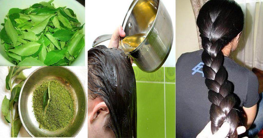 Aceite casero natural para el crecimiento del cabello 1