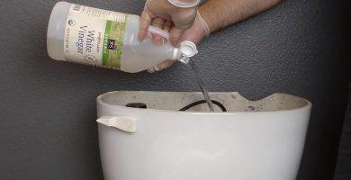 Él vierte vinagre en el tanque del inodoro y descarga. ¡El resultado es genial! 5